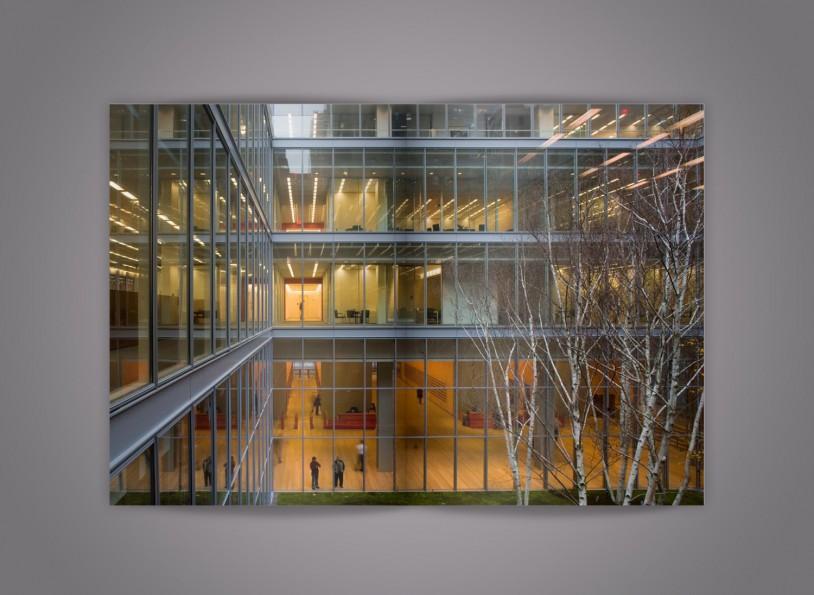 New York Times Headquarters 11