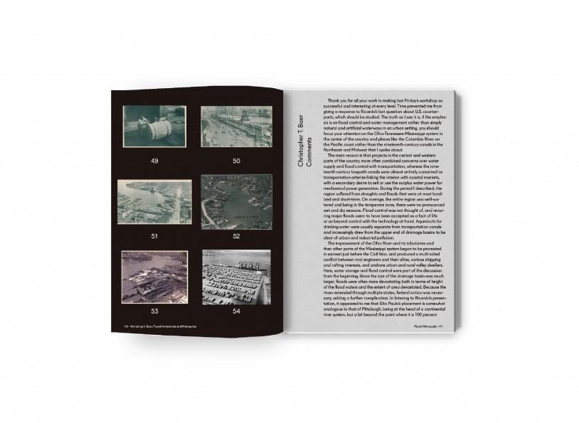 Fluvial Metropolis 10